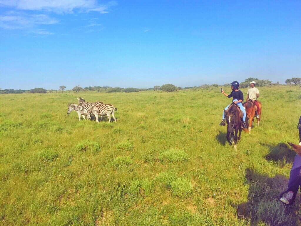 Horse Safari, South Africa Guide