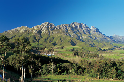 best wine farms stellenbosch