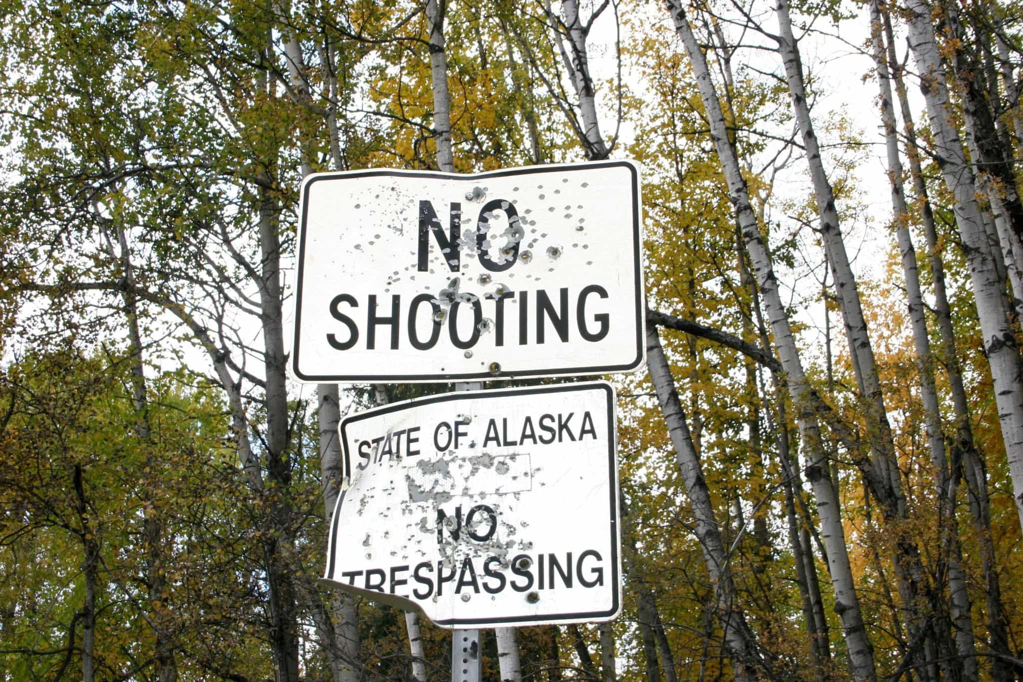 Alaska Travel Guide: Everything You Need To Know