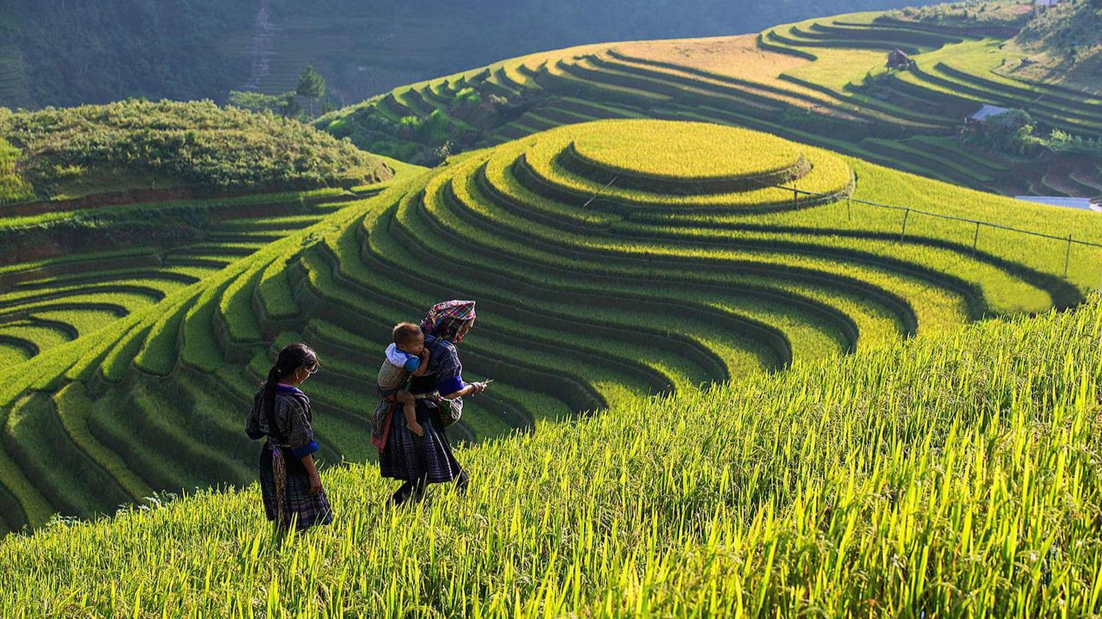 Vietnam Places to see