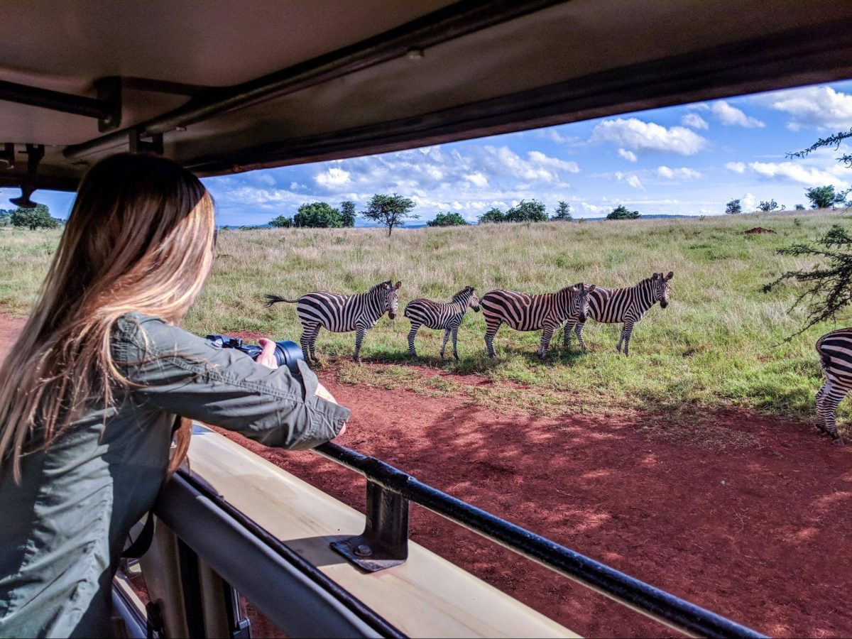 Best African Safari Experience