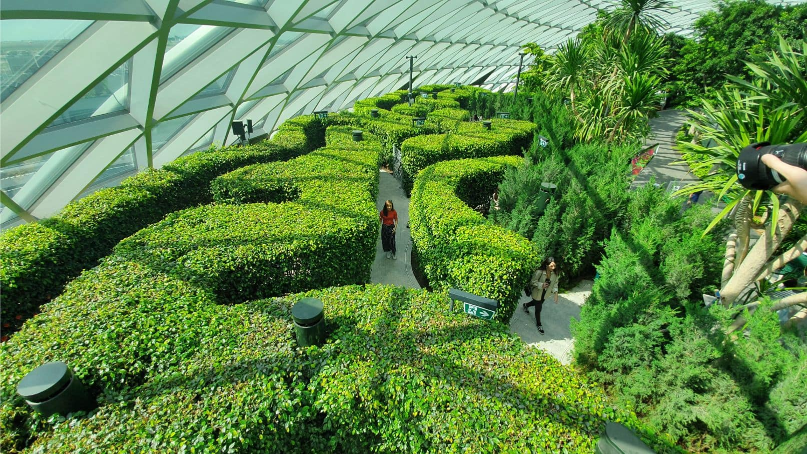 What to do in Singapore Airport
