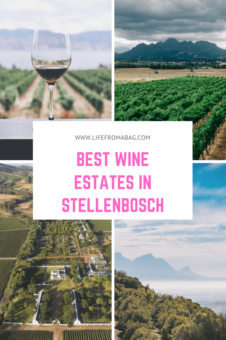 best wineries in stellenbosch