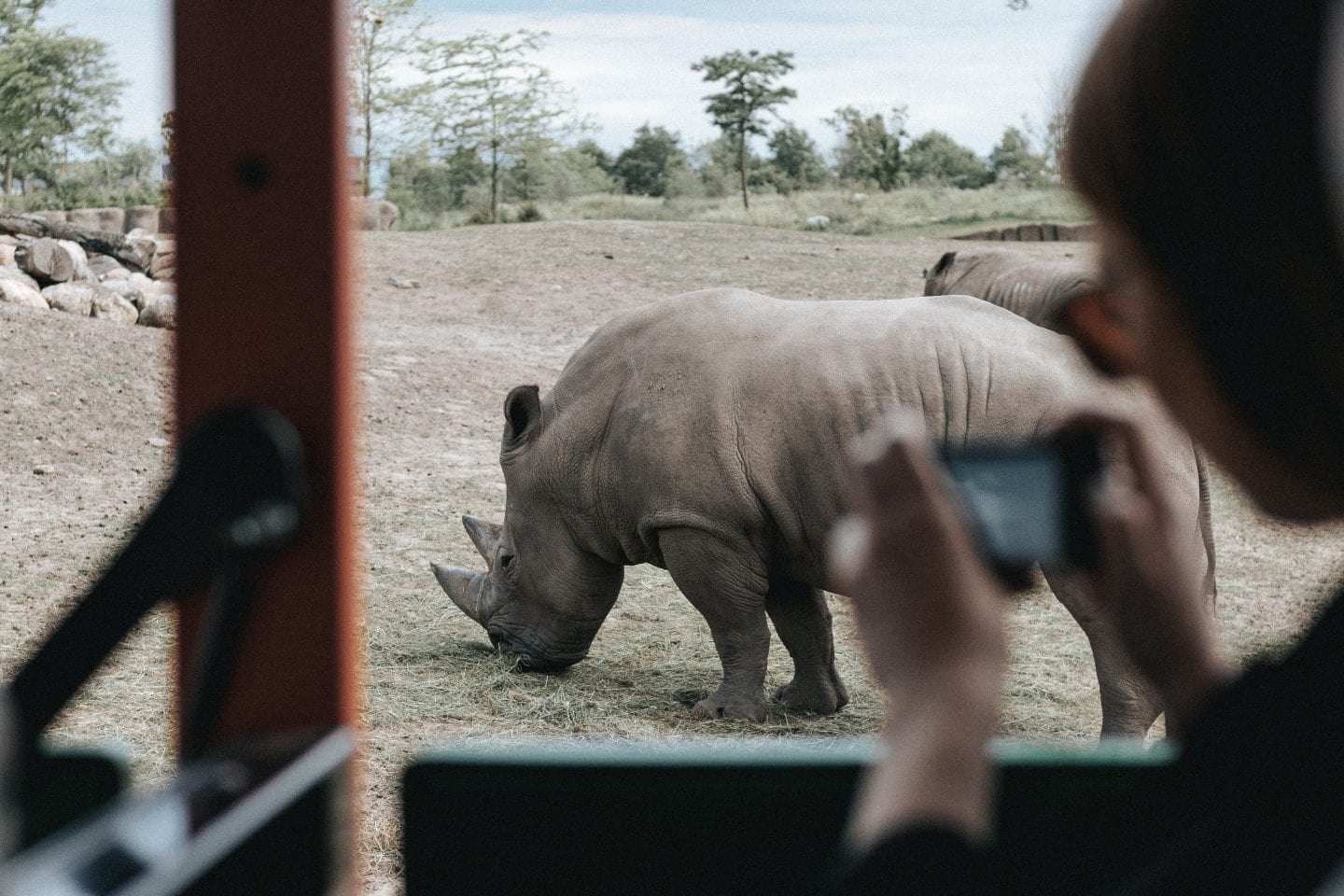 5 Best Virtual Tours of Africa