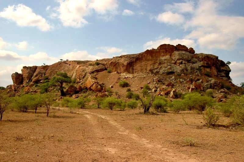 Mapungubwe National Park in Limpopo