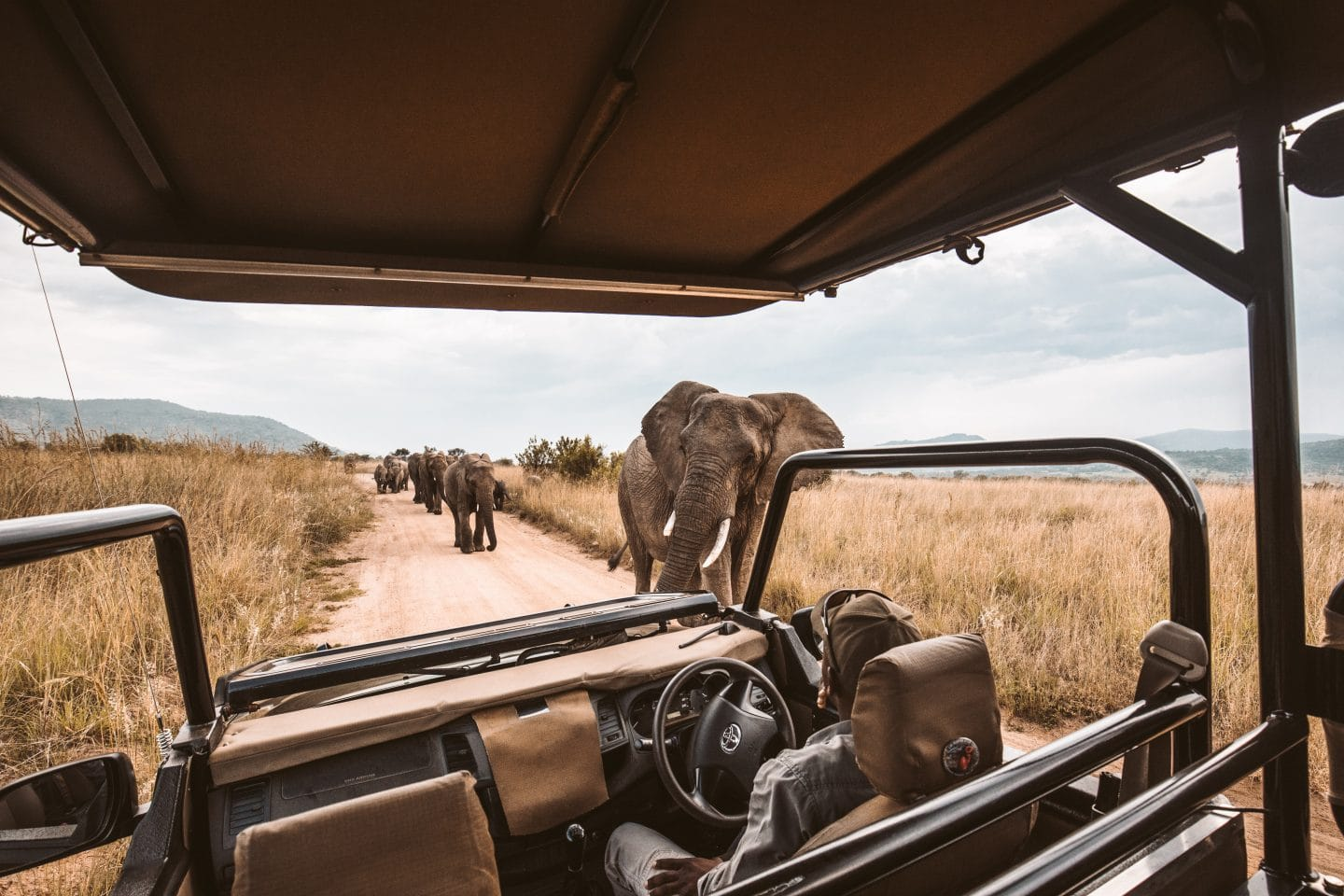 South Africa in 7 days – The Perfect Itinerary
