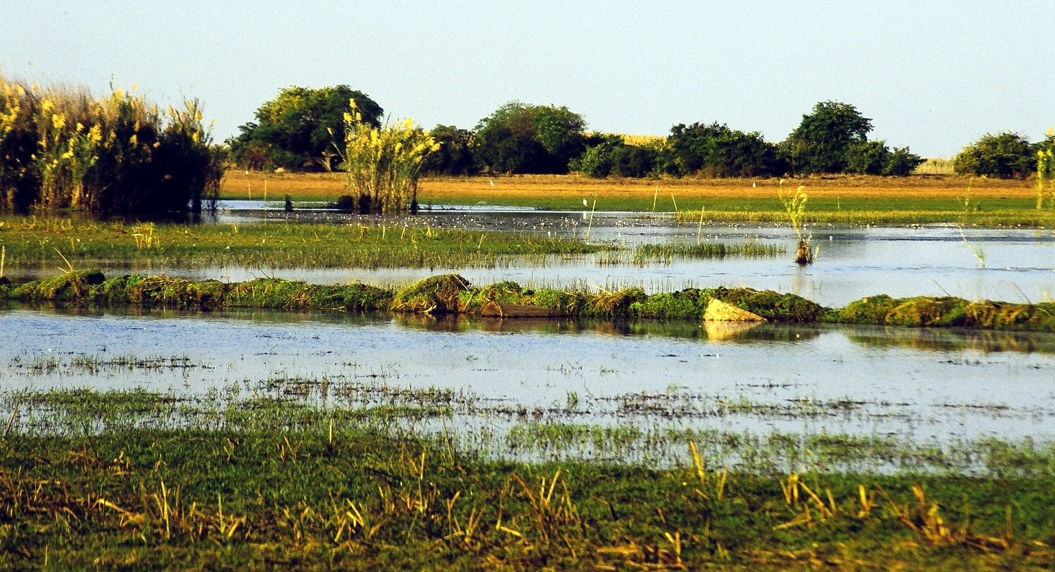 Wetlands in Africa
